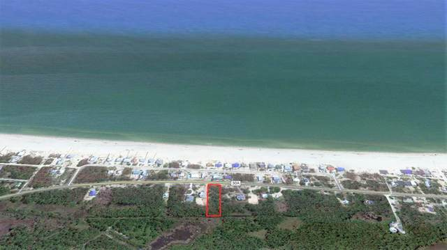 7799 Cr 30-A, PORT ST. JOE, FL 32456 (MLS #306644) :: Anchor Realty Florida