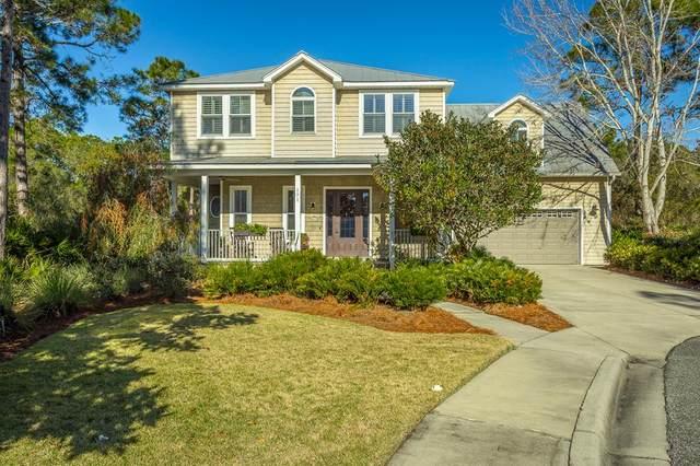 171 White Pelican Ct, CARRABELLE, FL 32322 (MLS #306660) :: The Naumann Group Real Estate, Coastal Office