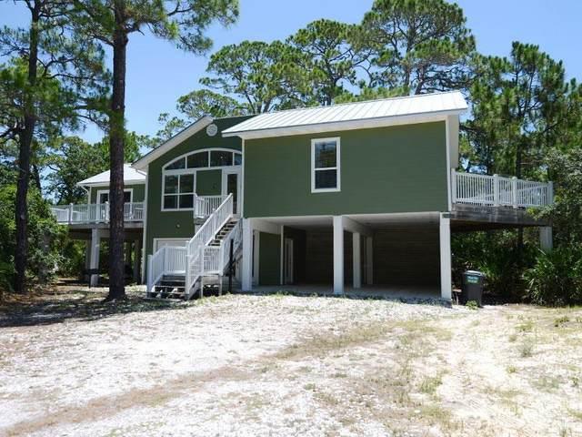 1601 Gannet Ct, ST. GEORGE ISLAND, FL 32328 (MLS #306663) :: The Naumann Group Real Estate, Coastal Office