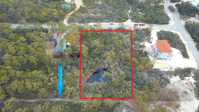1644 Ivy Way, ST. GEORGE ISLAND, FL 32328 (MLS #306665) :: The Naumann Group Real Estate, Coastal Office