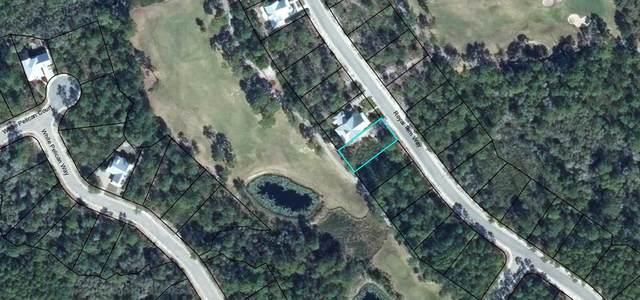 213 Royal Tern Way, CARRABELLE, FL 32322 (MLS #306667) :: The Naumann Group Real Estate, Coastal Office
