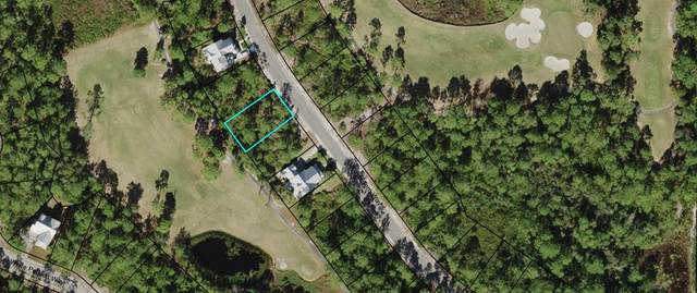 221 Royal Tern Way, CARRABELLE, FL 32323 (MLS #306678) :: The Naumann Group Real Estate, Coastal Office