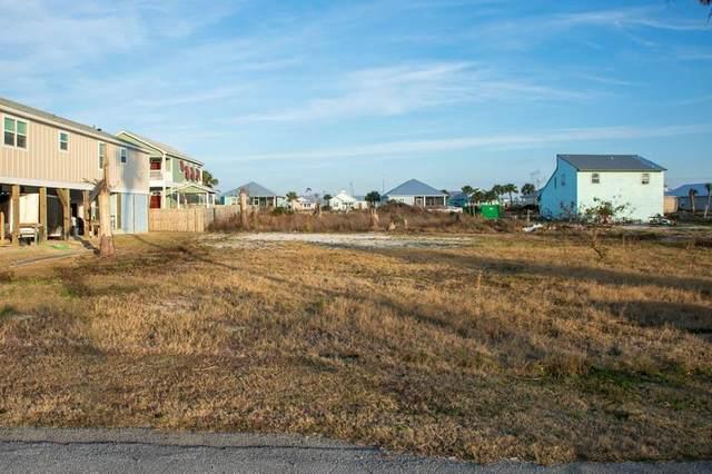 7 Kim Kove, MEXICO BEACH, FL 32456 (MLS #306694) :: Anchor Realty Florida