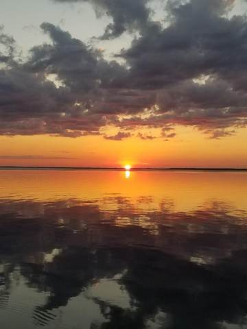 287 Magnolia Bay Dr, EASTPOINT, FL 32328 (MLS #306705) :: The Naumann Group Real Estate, Coastal Office