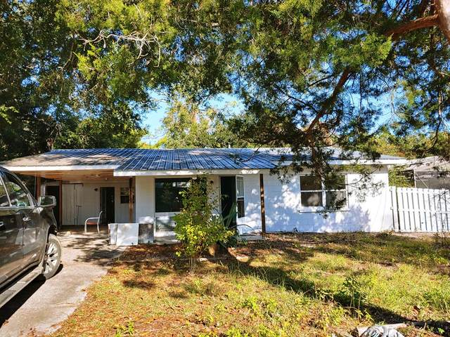 163 Carl King Ave, CARRABELLE, FL 32322 (MLS #306727) :: The Naumann Group Real Estate, Coastal Office
