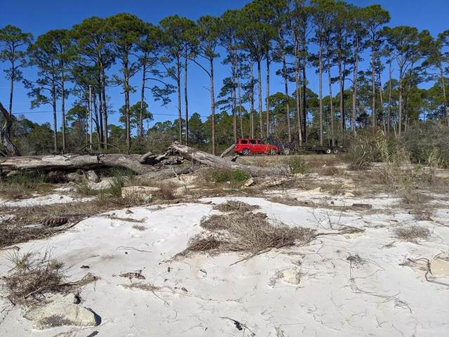 2266 Hwy 98, CARRABELLE, FL 32322 (MLS #306728) :: The Naumann Group Real Estate, Coastal Office
