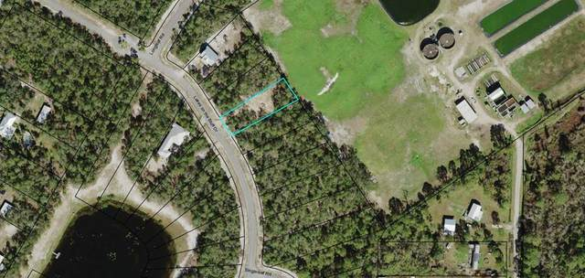 131 Lakes On The Bluff Dr, EASTPOINT, FL 32328 (MLS #306742) :: Anchor Realty Florida
