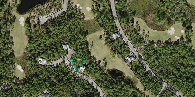 155 White Pelican Ct, CARRABELLE, FL 32323 (MLS #306775) :: Anchor Realty Florida