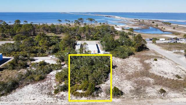 131 W Pine Ave, ST. GEORGE ISLAND, FL 32328 (MLS #306811) :: Berkshire Hathaway HomeServices Beach Properties of Florida