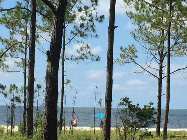 1808 Hwy 98, CARRABELLE, FL 32322 (MLS #306903) :: Anchor Realty Florida