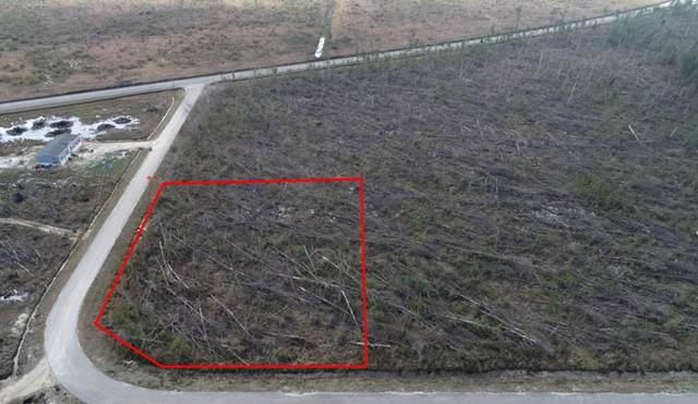 14 Tremont Ct, WEWAHITCHKA, FL 32465 (MLS #306925) :: The Naumann Group Real Estate, Coastal Office