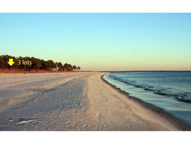 1694-169 Gulf View Blvd, CARRABELLE, FL 32322 (MLS #306984) :: Anchor Realty Florida