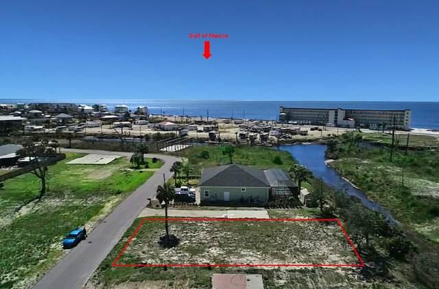 223 Nan Nook Rd, MEXICO BEACH, FL 32456 (MLS #307001) :: Anchor Realty Florida