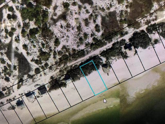 862 Gulf Shore Dr, CARRABELLE, FL 32322 (MLS #307024) :: Anchor Realty Florida