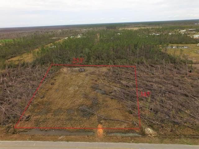 172 Tremont Ct, WEWAHITCHKA, FL 32465 (MLS #307055) :: The Naumann Group Real Estate, Coastal Office