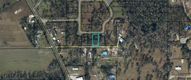 TBD Wood Duck Dr, WEWAHITCHKA, FL 32465 (MLS #307115) :: The Naumann Group Real Estate, Coastal Office