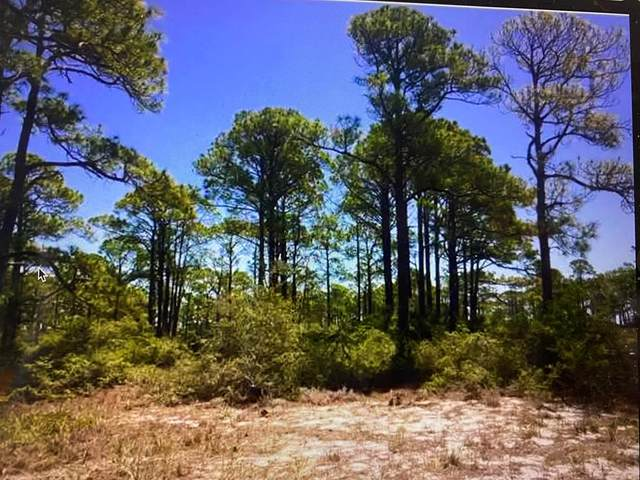 147 Boaters Rd, CARRABELLE, FL 32322 (MLS #307243) :: The Naumann Group Real Estate, Coastal Office