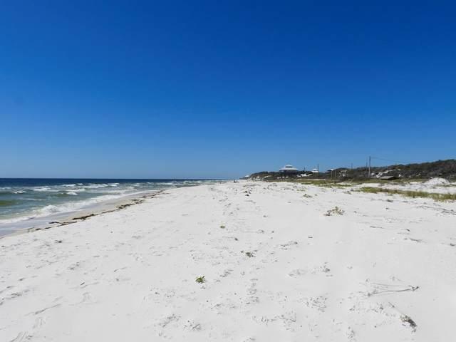 670 Gulf Shore Dr, CARRABELLE, FL 32322 (MLS #307251) :: The Naumann Group Real Estate, Coastal Office