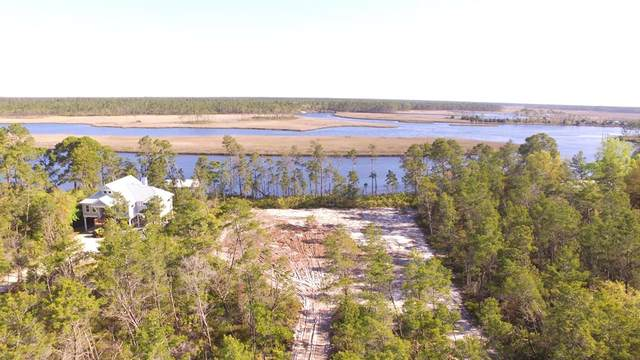 508 River Rd, CARRABELLE, FL 32322 (MLS #307465) :: The Naumann Group Real Estate, Coastal Office
