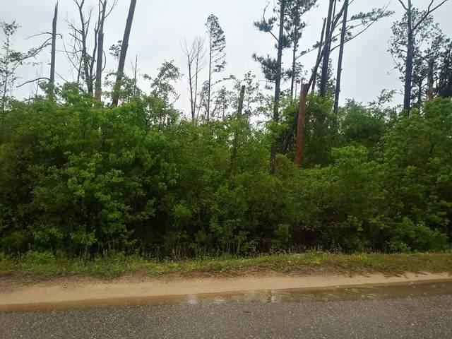 0 Borders Rd, WEWAHITCHKA, FL 32465 (MLS #307487) :: The Naumann Group Real Estate, Coastal Office