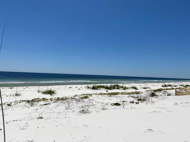 728 Gulf Shore Dr, CARRABELLE, FL 32322 (MLS #307502) :: The Naumann Group Real Estate, Coastal Office
