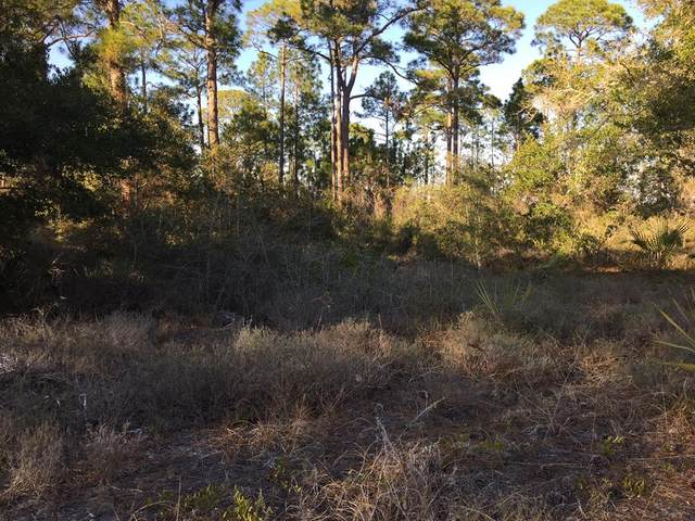 1711 Spacey Dr, CARRABELLE, FL 32322 (MLS #307519) :: Anchor Realty Florida