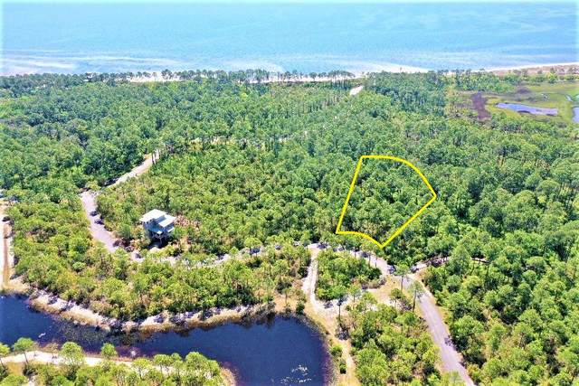 148 Lightning Bug Ln, St. Teresa, FL 32358 (MLS #307548) :: The Naumann Group Real Estate, Coastal Office