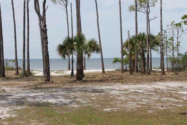 1159 Russell Way, ST. GEORGE ISLAND, FL 32328 (MLS #307554) :: The Naumann Group Real Estate, Coastal Office