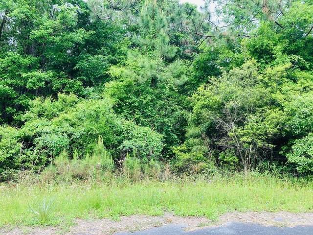 53 Bluewater Bay Cir, CARRABELLE, FL 32322 (MLS #307616) :: The Naumann Group Real Estate, Coastal Office