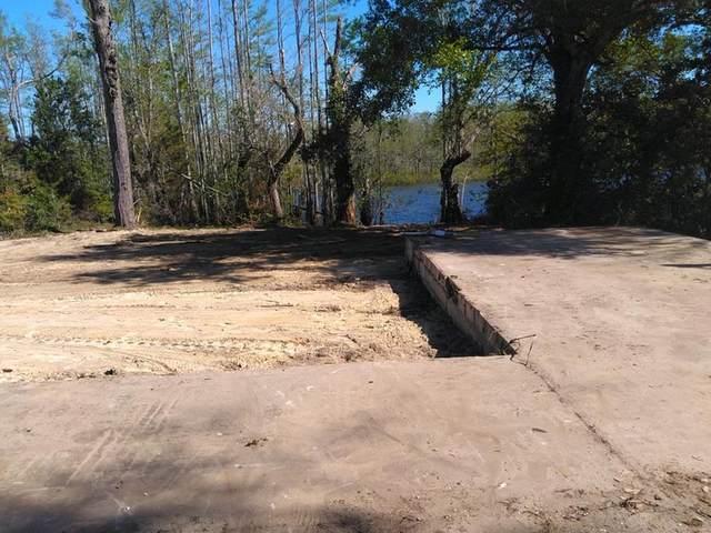 339 Bob Little Dr, WEWAHITCHKA, FL 32465 (MLS #307635) :: The Naumann Group Real Estate, Coastal Office