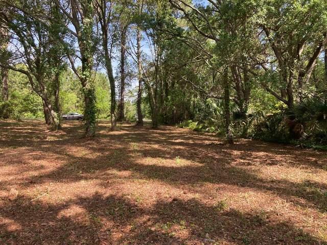 5 Blue Water Cir, CARRABELLE, FL 32322 (MLS #307667) :: The Naumann Group Real Estate, Coastal Office