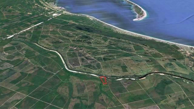0 Roberts Landing Rd, WEWAHITCHKA, FL 32465 (MLS #307696) :: The Naumann Group Real Estate, Coastal Office