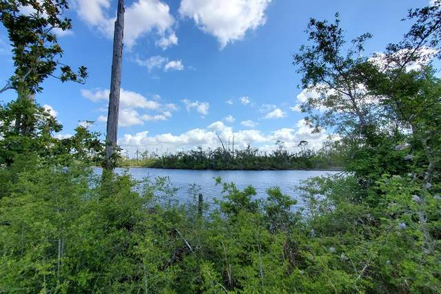 291 Big Bend Dr, PORT ST. JOE, FL 32456 (MLS #307697) :: The Naumann Group Real Estate, Coastal Office