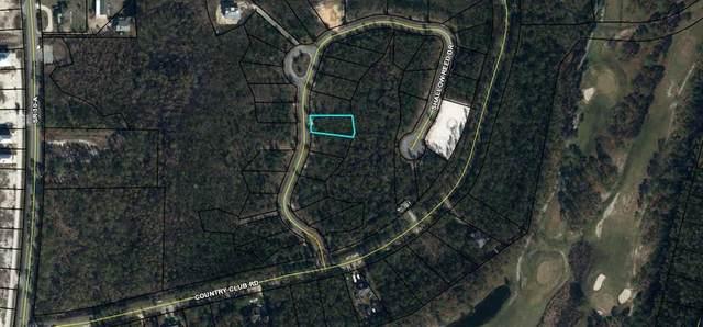 38 Shallow Reed Dr, PORT ST. JOE, FL 32456 (MLS #307722) :: Anchor Realty Florida