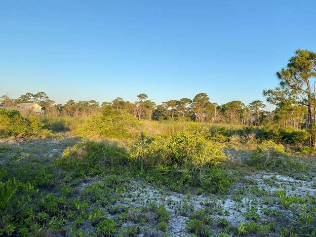 352 Starfish Ave, CARRABELLE, FL 32322 (MLS #307752) :: Anchor Realty Florida