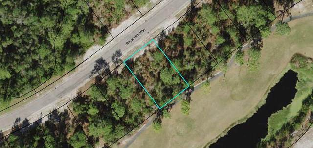 407 Royal Tern Way, CARRABELLE, FL 32322 (MLS #307839) :: The Naumann Group Real Estate, Coastal Office