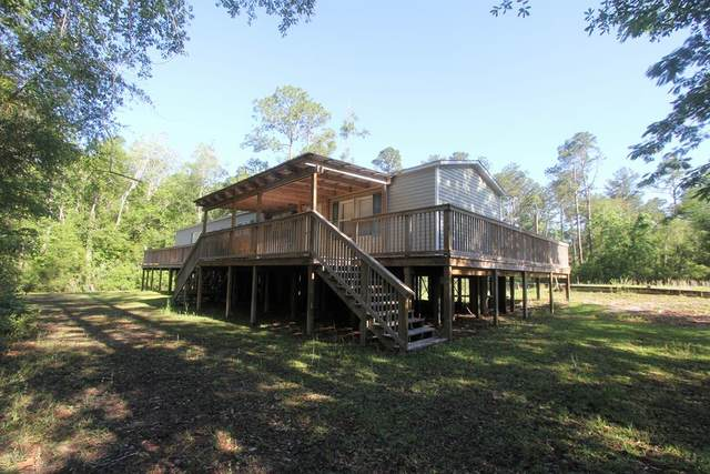 6919 Nellie Whitfield Rd, WEWAHITCHKA, FL 32465 (MLS #307850) :: Anchor Realty Florida