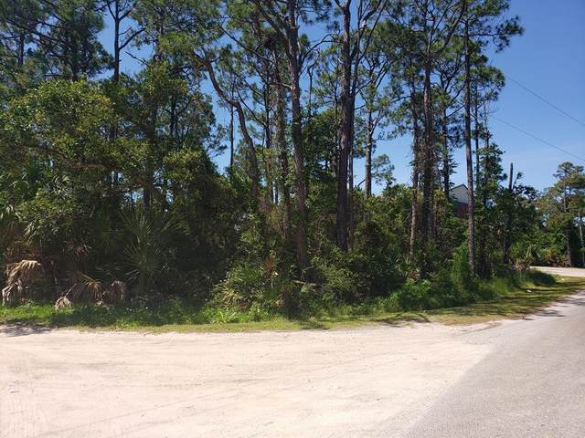 332 E Pine Ave, ST. GEORGE ISLAND, FL 32328 (MLS #307891) :: The Naumann Group Real Estate, Coastal Office