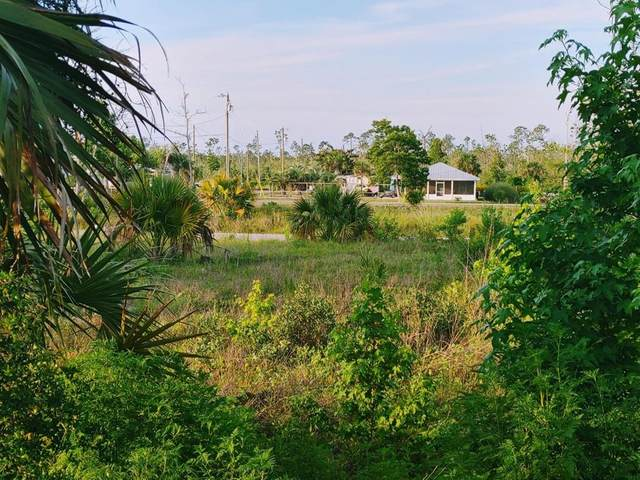 205 Fortner Ave, MEXICO BEACH, FL 32456 (MLS #307936) :: Anchor Realty Florida