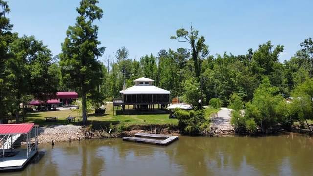 354 Red Bull Island Dr, WEWAHITCHKA, FL 32465 (MLS #307955) :: Anchor Realty Florida