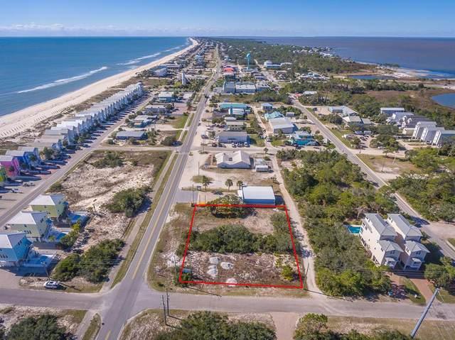 259 E Gulf Beach Dr, ST. GEORGE ISLAND, FL 32328 (MLS #307966) :: The Naumann Group Real Estate, Coastal Office