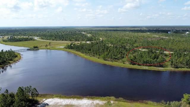 82 Torrey Pine Trl, WEWAHITCHKA, FL 32465 (MLS #307975) :: The Naumann Group Real Estate, Coastal Office