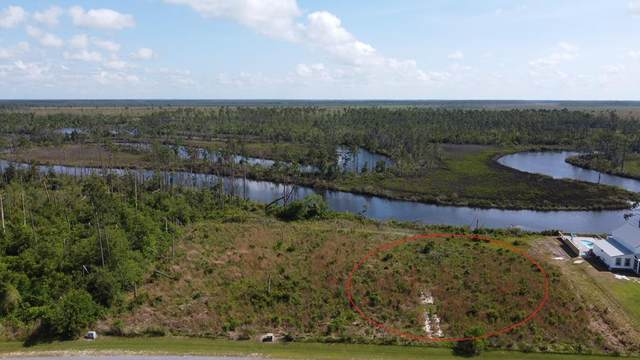 36 Wide Water Cir, WEWAHITCHKA, FL 32465 (MLS #307976) :: The Naumann Group Real Estate, Coastal Office