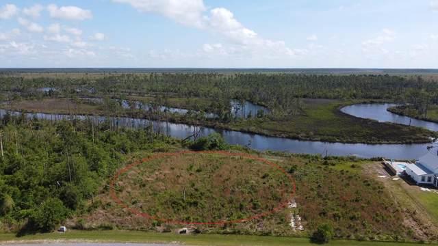 3637 Wide Water Cir, WEWAHITCHKA, FL 32465 (MLS #307978) :: The Naumann Group Real Estate, Coastal Office