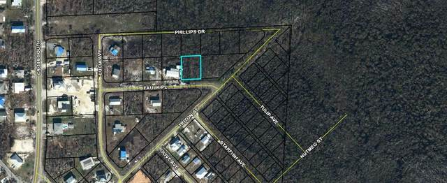 000 Faulk Pl, PORT ST. JOE, FL 32456 (MLS #307995) :: Anchor Realty Florida