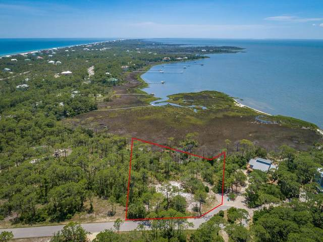 1259 Avocet Ln, ST. GEORGE ISLAND, FL 32328 (MLS #308048) :: Anchor Realty Florida
