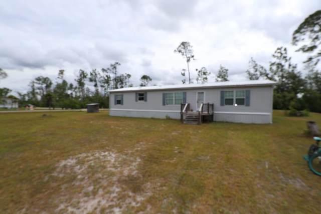 102 Sweet Gum Cir, WEWAHITCHKA, FL 32465 (MLS #308067) :: The Naumann Group Real Estate, Coastal Office