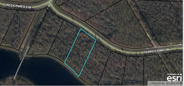0 Torrey Pine Trl, WEWAHITCHKA, FL 32465 (MLS #308089) :: The Naumann Group Real Estate, Coastal Office