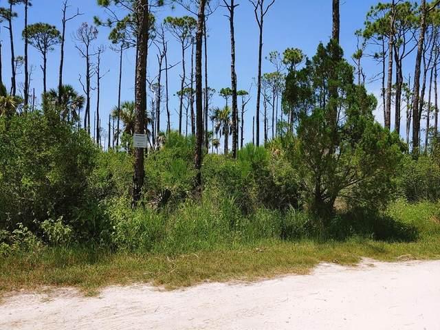 680 E Bay Shore Dr, ST. GEORGE ISLAND, FL 32328 (MLS #308101) :: Anchor Realty Florida