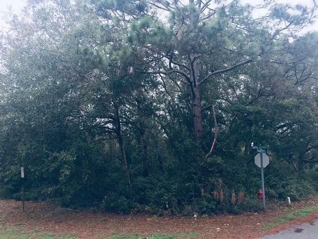 143 Apalachee St, CARRABELLE, FL 32322 (MLS #308120) :: The Naumann Group Real Estate, Coastal Office